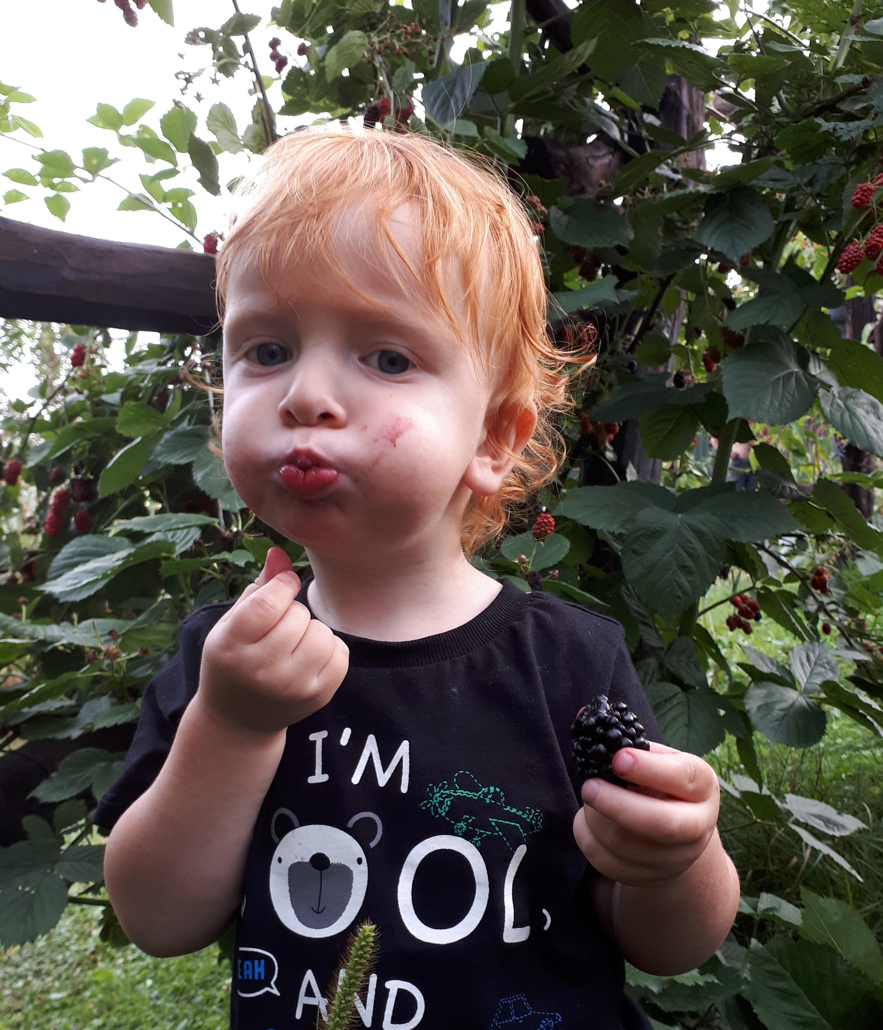 zdrowe nawyki żywieniowe u dziecka